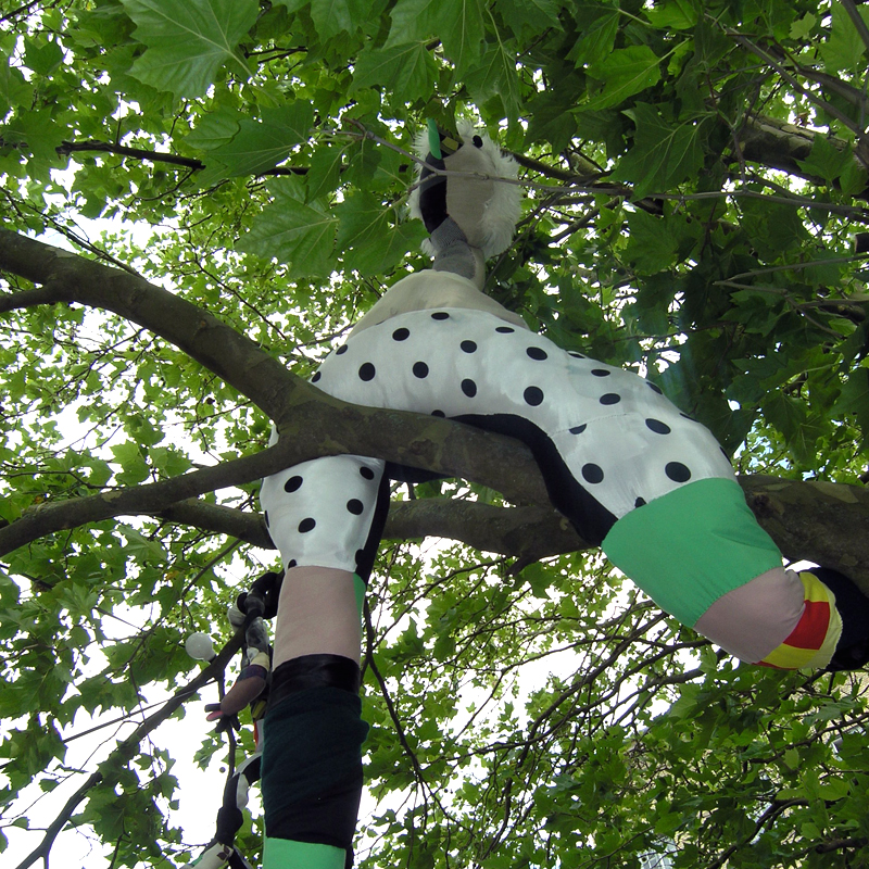 bird puppet tree
